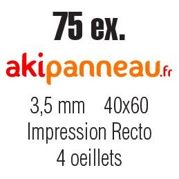 40x60 cm •75 ex • Recto •...